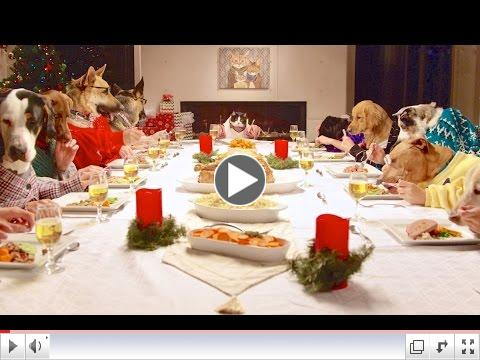 Holiday Dinner Dining Etiquette