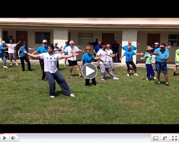 World Tai Chi & Qigong Day - 24 Taijiquan Form