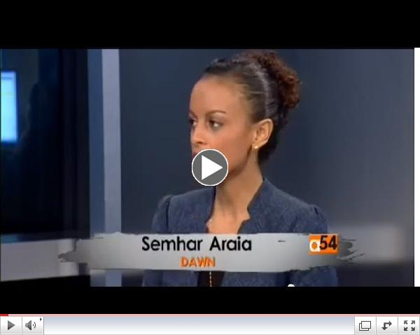 DAWN on Voice of America Africa 54 - April 2014