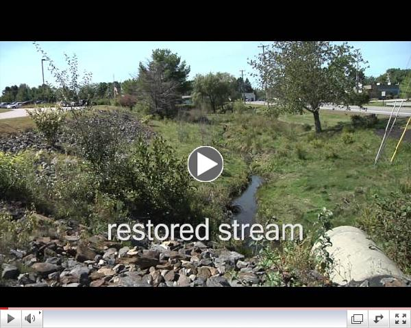 The Restoration of Long Creek. An Urban Stream Gets New Life.