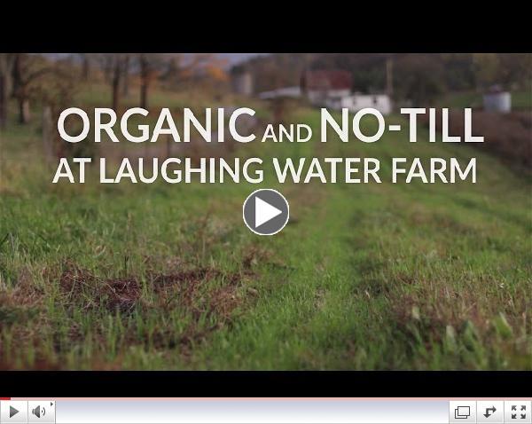 Organic and No-Till at Laughing Water Farm