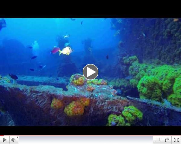 Diving the Hydro Atlantic Wreck