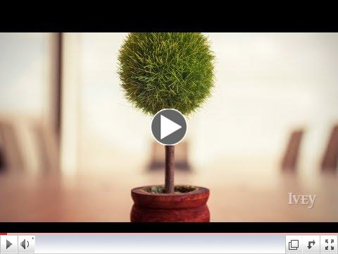 Sustainable Innovation | Faculty Focus with Tima Bansal - October 2012