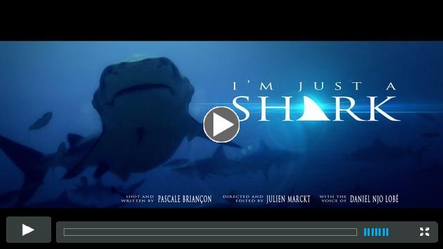 I'M JUST A SHARK