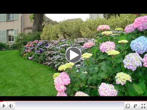 Enhance the Beauty of Your Home with a Flower Garden