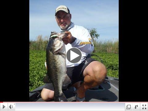 Bobby Barrack Talking Frog Fishing - Snag Proof Frogs