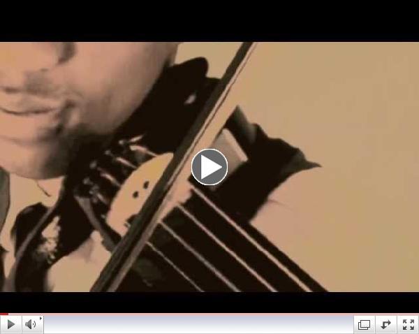 Violinist Daniel D. - Stevie Wonder Tribute