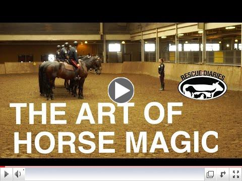 The Art of Horse Magic