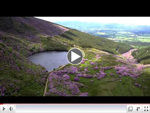 Vee Pass & Knockmealdown Mountains, Co. Tipperary
