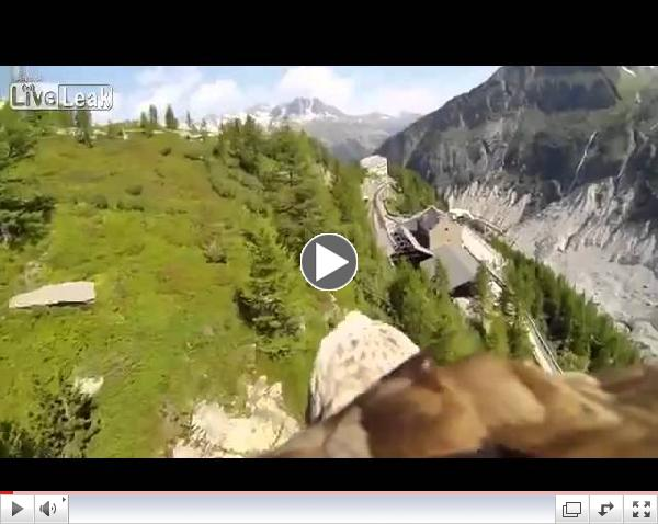 Flying Eagle point of view amazing