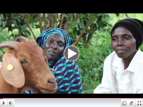 Gender discrimination in Uganda: Aisha's story