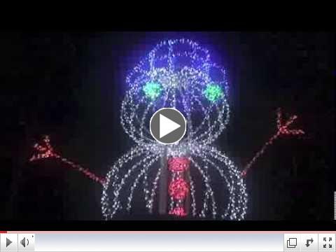 Tifton Grapevine - Festival of Lights