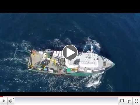 Aerial Footage from the One Gulf Expedition