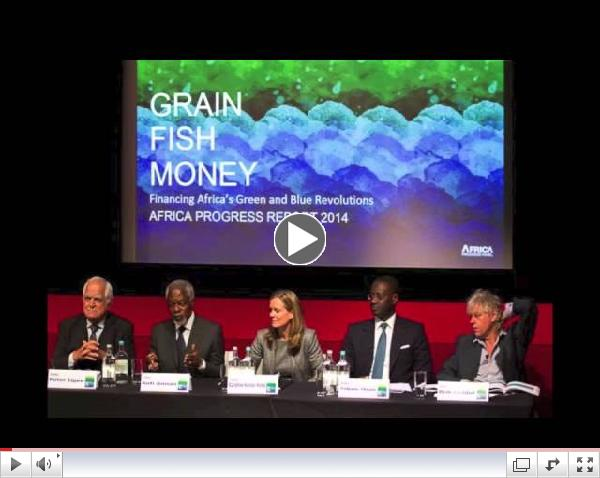 Launch of the Africa Progress Report 2014