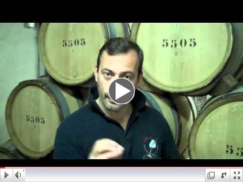 Wine from Burgundy Part 1: Jean Michel Chartron