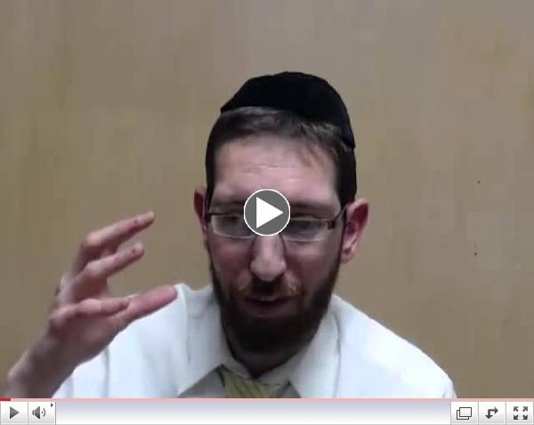 Torah Live Stream