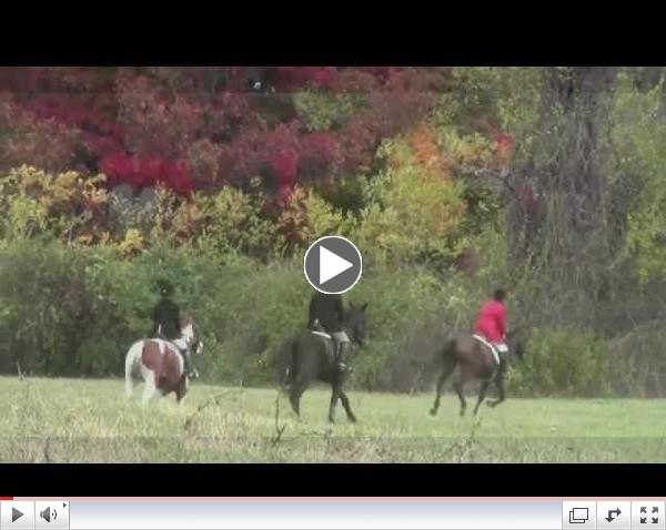 Smithtown Hunt, Opening Day 2013. An Artist's View