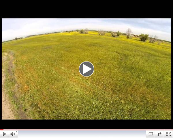 Project Apis m. - A Drone's (UAV) View of Bee Pasture