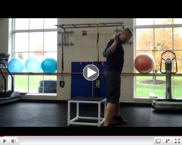 Fitness Pointe Box Squats