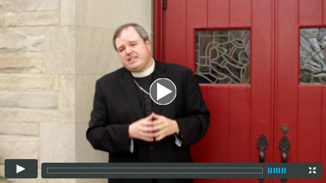 Bishop Sean Explains the Proposed Canons and Constitution Changes