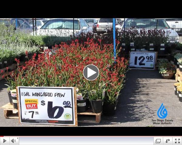 Spring Plant Fairs 2014