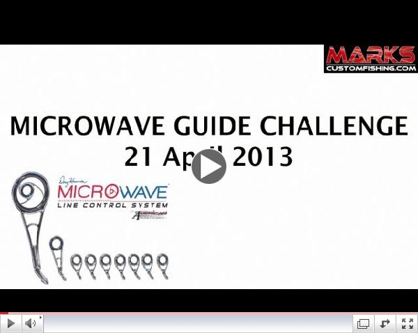 MICROWAVE Guide System Challenge