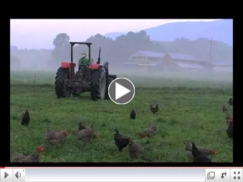 POLYFACE FARM - Joel Salatin