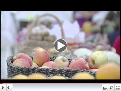 ABC Channel 13 features Rawfully Organic!