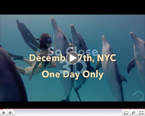 So Close 3D: Dance with Wild Dolphins - TRAILER