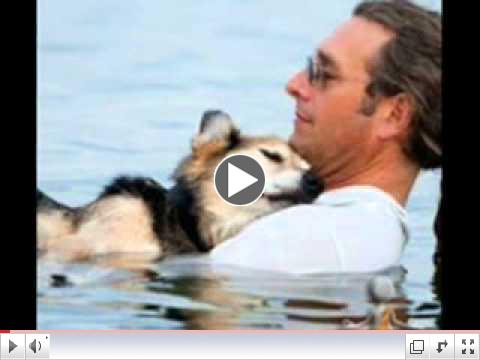 Lake Superior Story : Tender Moment Between Man And His Sick Dog In Lake Superior