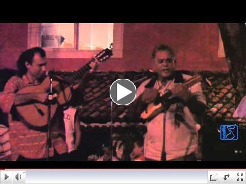 Gallo - El Musico de San Pancho