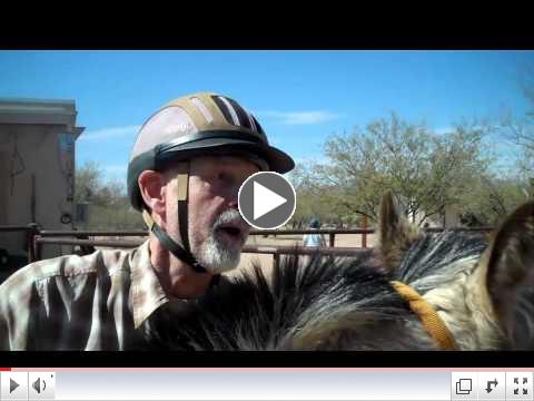 ROTH's Foals in Training  Equine Voices, AZ - Day 3