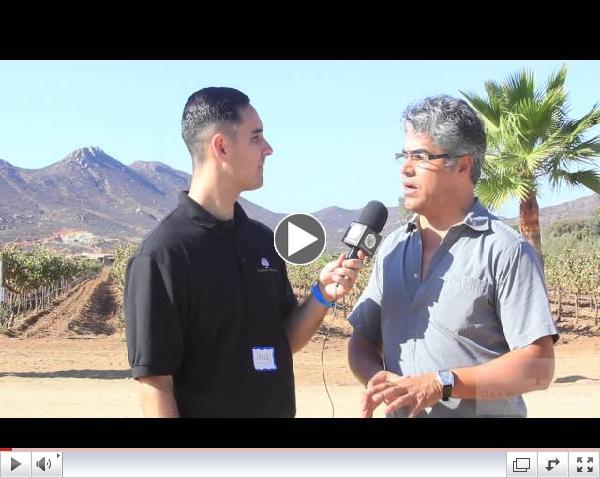 OTV-SDAR & AMPI Baja California Wine Tour