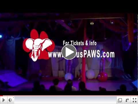 Circus PAWS 30-second Public Service Announcement
