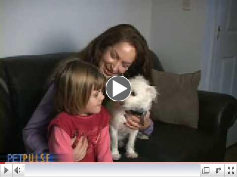 'Thrown Away' Dog Saves Little Girl's Life