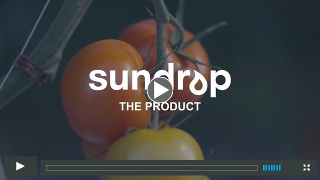 Sundrop - The Produce