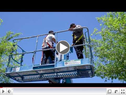 Spotlight on Aerial Lift Training for WECA Apprenticeship Programs