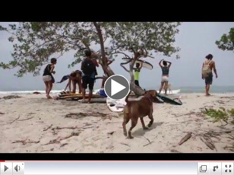 Here's a fun surf video from our friends at Santa Madre.