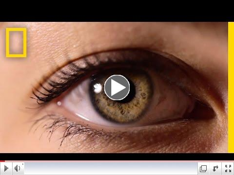 Eyes: The Windows to Your Health | National Geographic