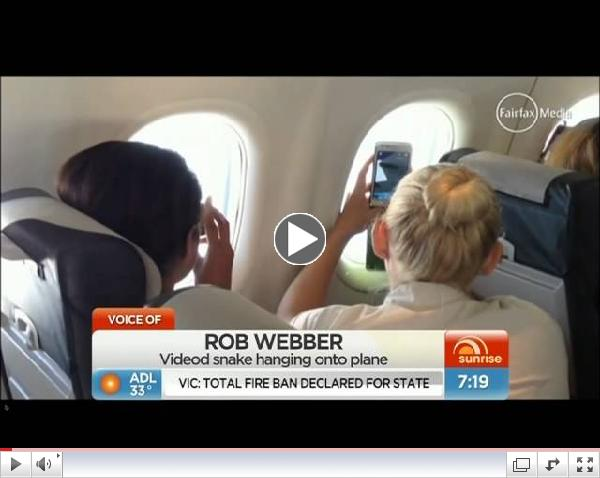 Snake on a plane! (Australia)