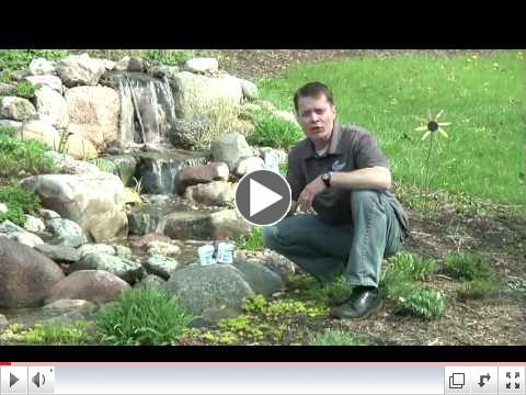 How to Get Your Pond Started in the Spring by Aquascape