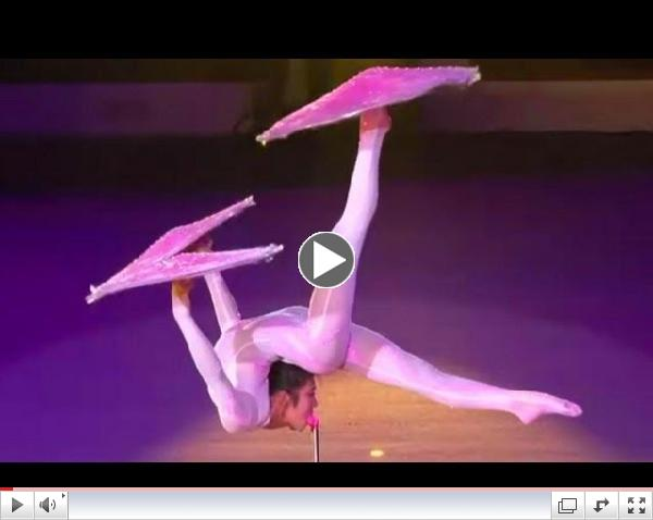 Chinese Circus - Amazing Contortionist Performance