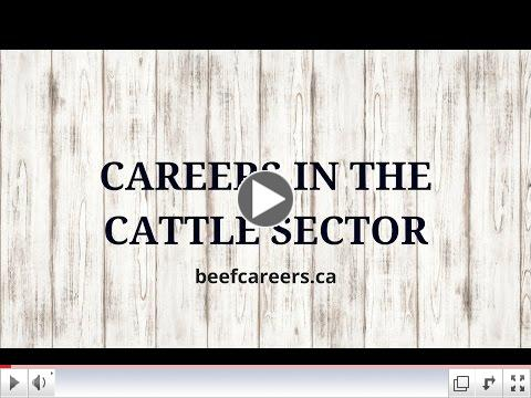 Career Opportunities in Livestock Marketing & Operations