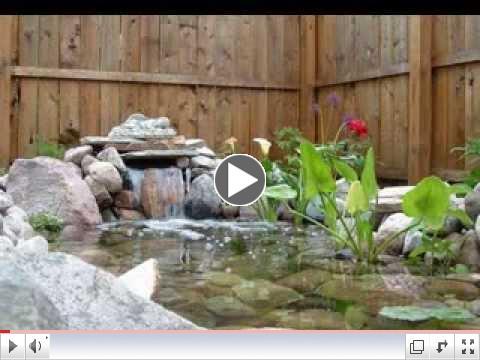 Small garden pond ideas