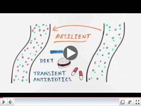 Enterome: the gut microbiome and its impact on our health