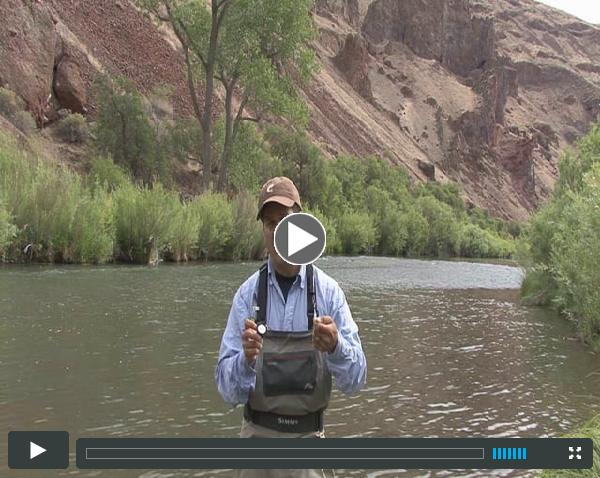How to use a Furled Dry Fly Leader