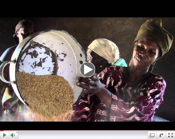 Roadmap for Promoting Women's Economic Empowerment