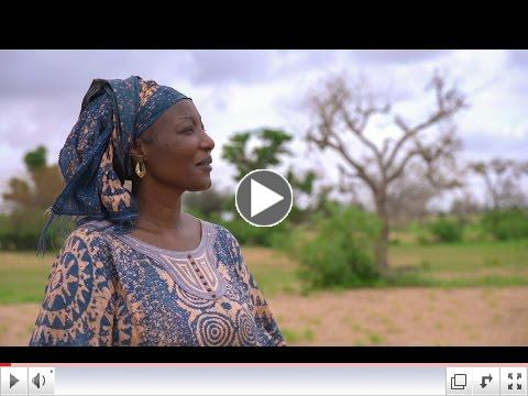 Senegal's Farmers Reap Rewards of Climate-Smart Agriculture/ Al�j��abankinn