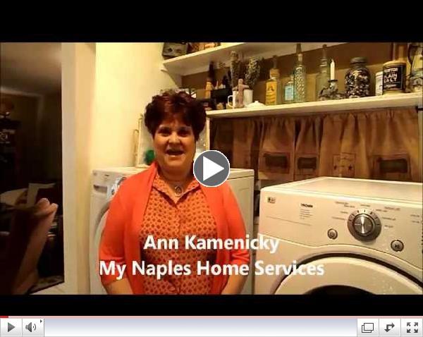 Ann Kamenicky Testimonial for Collier Pest Control