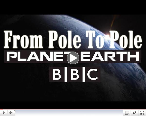 Planet Earth Episode 1 From Pole to Pole - BBC Documentary
